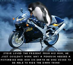 steve the penguin and his motorbike